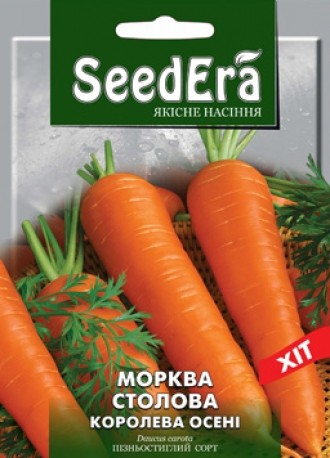 Морква столова Королева Осені
