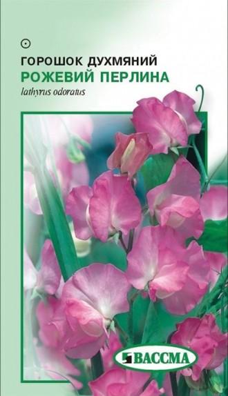 Горошок духмяний рожева перлина