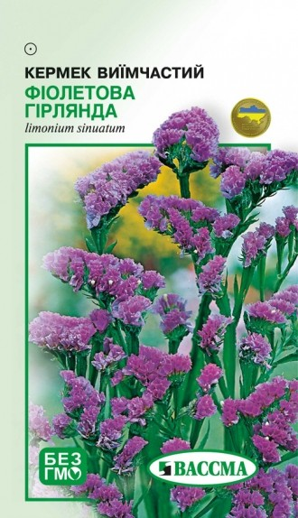 Кермек Фиолетовая гирлянда
