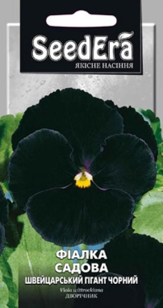 Фіалка садова Швейцарський Гігант Чорний