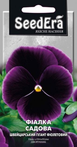 Фіалка садова Швейцарський Гігант Фіолетовий