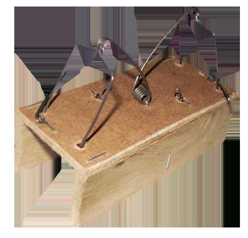 Мишоловка дерев'яна будиночок