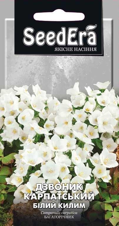 Колокольчик Карпатский Белый ковер многолетний