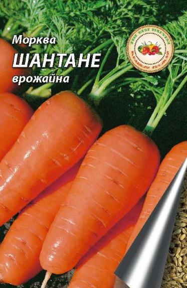 Морква Шантане КЛ