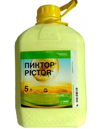 Пиктор