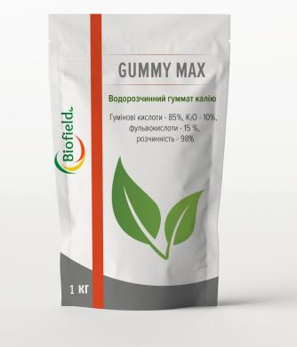 Сухий гумат Gummy Max