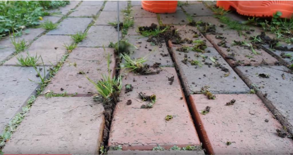 Як позбутися від трави між плитками на доріжці назавжди